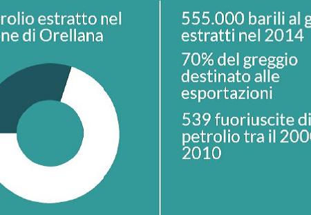 infografica_Blog_SCN_Focsiv