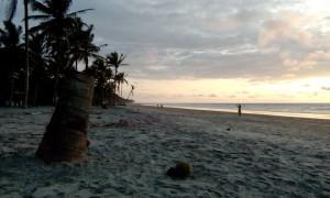 Isla Bolivar