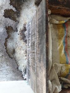Cassa di legno per la fermentazione del cacao