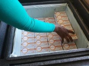 Vaccini distribuiti per la prevenzione del colera.